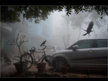 in Munirka Village: A fine winter foggy day
