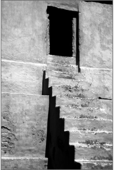 in Lines BW-04