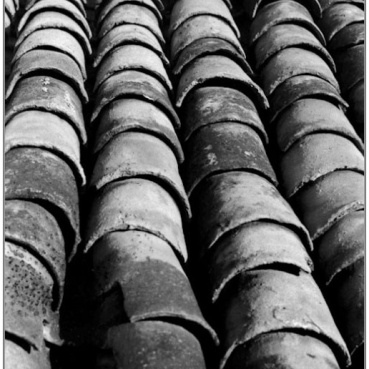 in Lines BW-15